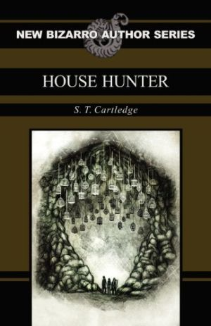 House Hunter S T Cartledge 01