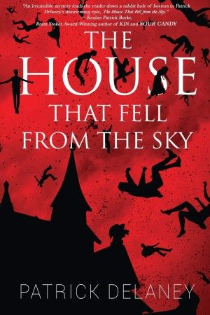 The House That Fell From The Sky Patrick Delaney Poster Large