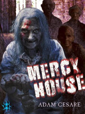 Mercy House Adam Cesare Poster