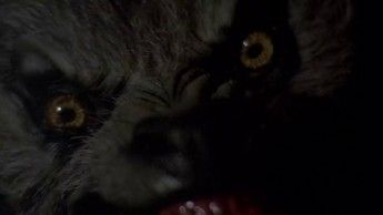An American Werewolf In London 01