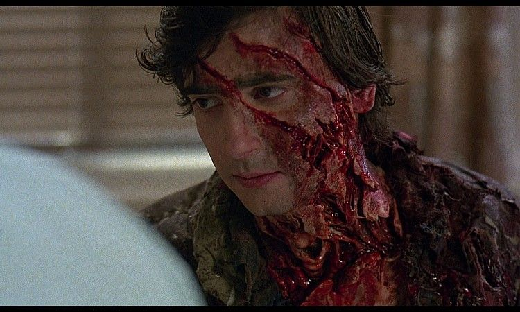 An American Werewolf In London Main