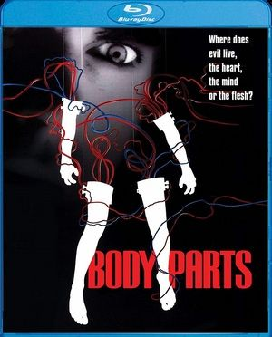 Body Parts Large