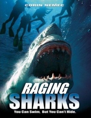 Raging Sharks Large