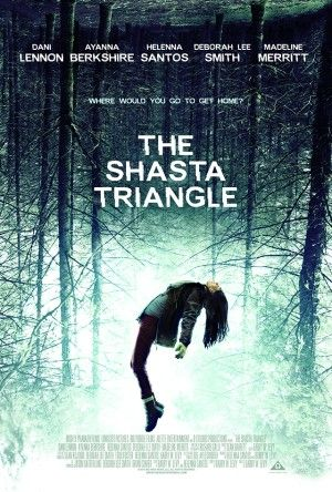 The Shasta Triangle Poster Large