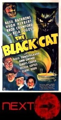 the black cat poster small next