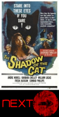 the shadow of the cat next