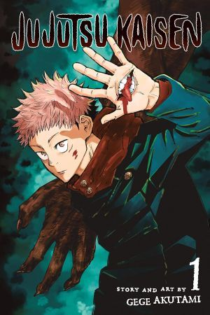 Jujutsu Kaisen Vol 1 Large