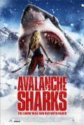 Avalanche Sharks Cover