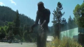 The Bigfoot Tapes 02