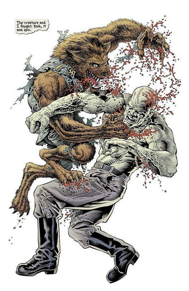 Fables Werewolves Of The Heartland 02