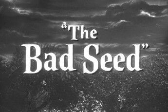The Bad Seed 02