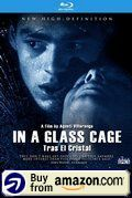 In A Glass Cage Amazon Us
