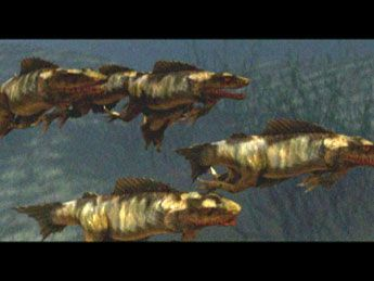 Swarm Of The Snakehead 10