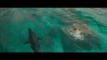 The Shallows 12